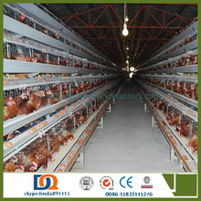chicken mesh cage for poultry farm