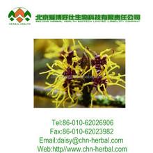 China Powder Leaf Witch Hazel Extract