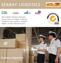 Professtional customs clearance service agent