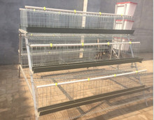 chicken wire for bird cage/poultry farm house design/ high quality automatic layer egg chicken cage