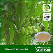 High quality olive leaf extract powder,dry olive leaf extract powder