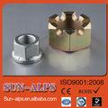 estándar de alta calidad de tratamiento de superficie exportadores de nueces de cola para la venta