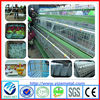 china manufacturer used broiler chicken cages for sale/ladder type chicken cage/california chicken cage