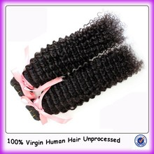 Fashion Style Afro Kinky Curly Virgin Brazilian Human Hair For Braiding