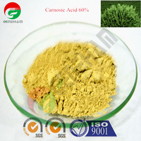 carnosic acid solubility antioxidant 60% supplier