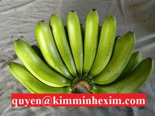 Banana Fruit Vietnam