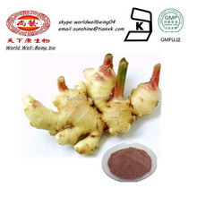 Health Benefits Powdered Ginger Gingerol 5% 6% Powder Price / Ginger Root Powder Extract Price in China / Organic Gingerols
