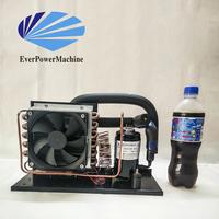 Cheap price mini refrigerator freezing condensing unit HAC650DC48