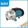 hanlei 1HP electric JS100 jet self-priming motorcycle fuel pump