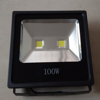 IP65 Outdoor light 100W Flood Light