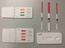 laboratory medical device INV antibiotics rapid test
