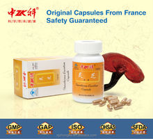 New Product Private label Best Selling Products Growing Reishi Mushrooms powder