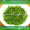 Chinese Plant Extract Green Tea Extract 20% L-Theanine - QS&ISO9001 Cert