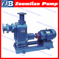 ZW Self Priming Pump/Swimming Pool Pump/Self Priming Pool Pump
