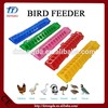 professional chicken farm automatic feeder for broiler In Uganda