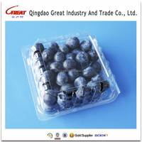 Food Use and Blister Plastic Fruit Container