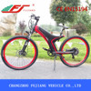 New model 2015 FJ-TDA11 electric motor bike home 29 inch 250w