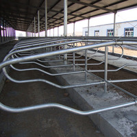 Dairy Farming Equipment Cow/Horse Free Project-Cow Stall Panels for Sale