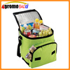 Popular recyclable cooler bag for frozen food