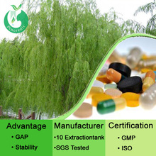 Herb extract White willow bark extract salicin/white willow bark extract powder