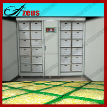 Soya Bean, Mung Bean Sprout Machine, Barley Sprouting Machine for Sale