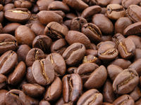 Quality Coffee beans and ground coffee on sale