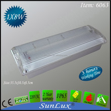 fluorescent tube emergency light