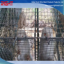 New Product Mink Wire Mesh Cage/ Reptile Cages