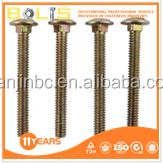 good quality DIN603 ZY plated Carriage bolt