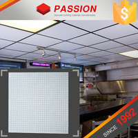 Square Perforated Aluminum Shop Top Designs For Ceilings
