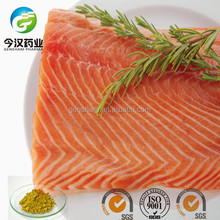 China Top Manufacuture Natural Antioxidant Food Preservative Rosemary Extract Rosmarinic Acid