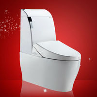 New Model More Efficent One Piece Toilet Repair