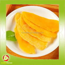 factory dried mango preserved with competitive price