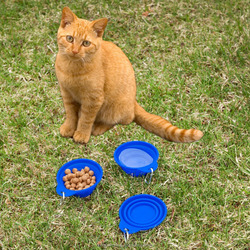 Travel Dog Bowl by RopriPet Collapsible Food & Water Bowl for Your Pet Made from Food Safe, FDA Approved Silicone