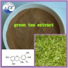 Japanese style Sencha Green Tea Extract