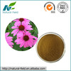 100% Pure Natural Powdered Echinacea Purpurea Extract Polyphenol 4% Manufacturer