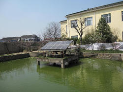 Solar panel 250W 300W 260W solar PV panel CEC IEC TUV Fire Test II