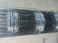 Manufacturer!!!!!galvanized welded wire mesh roll cheap price(manufacturer/supplier)
