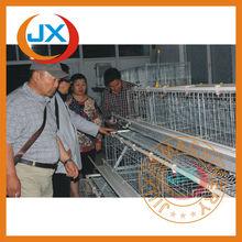 Poultry farm equipment, automatic design chicken breeding cage