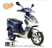 two wheel electric vehicle 500w