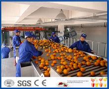 turn key full automatic orange juice processing line