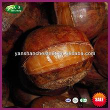 Orgánica de secado rápido Frozen Ringent asado de la castaña