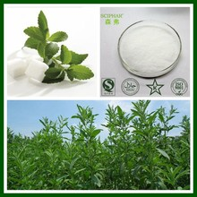 Original Manufacturer Wholesale Stevia extract, Stevia rebaudiana, Stevia powder