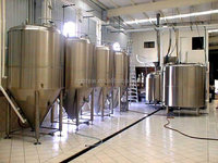 300L electricity heating beer brewing machine with CE/ISO certificate