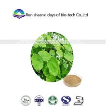 Herbal Supplements Sexual Energy Product Epimedium Extract