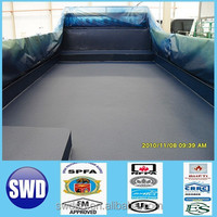 polyurethane elastomer paint protection for cars
