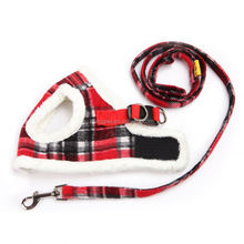 dog collar makers