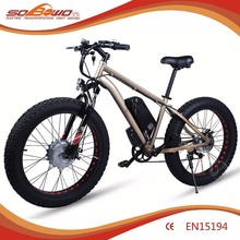 easy riding latest hub battery high performance electric bicycle