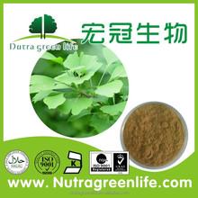 100% Natural Bulk Ginkgo Biloba Extract(24/6)/Ginkgo Biloba Extract Powder