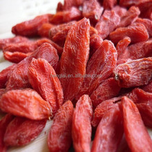 we sell dried organic goji berries for reliable importers